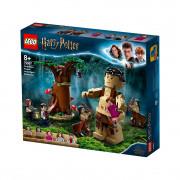LEGO Harry Potter Pădurea interzisă: întâlnirea dintre Grawp și Umbridge (75967)