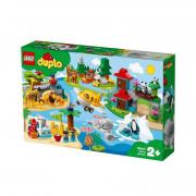 LEGO DUPLO Animalele lumii (10907)