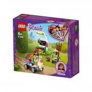 LEGO Friends Grădina cu flori a Oliviei (41425)