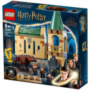 LEGO Harry Potter Hogwarts: Întâlnirea cu Fluffy (76387)